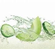 Cucumber Melon 3